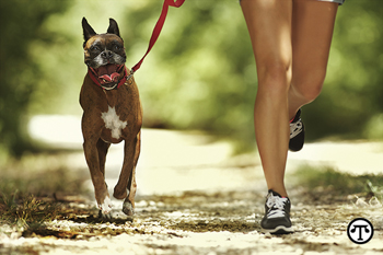 Keeping your dog healthy and happy may be easier than you think—and good for both of you.